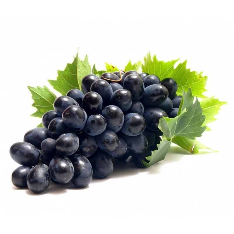 Sementes uva preta - o fruto da videira 1.55 - 1