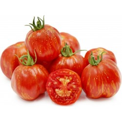 Striped Stuffer Tomato Seeds 1.65 - 7