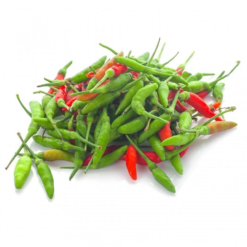Bird's Eye Chili Seeds (piri-piri, jindungo) 2.15 - 2