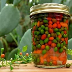 Tepin - Chiltepin Chili Samen 2.5 - 2