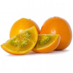 Naranjilla Lulo Seme (Solanum quitoense) 2.45 - 5