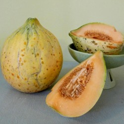 Semi di melone Eel River 2.049999 - 5