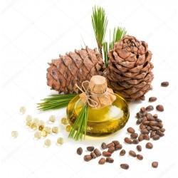 Sementes de Pinus sibirica 3.95 - 2