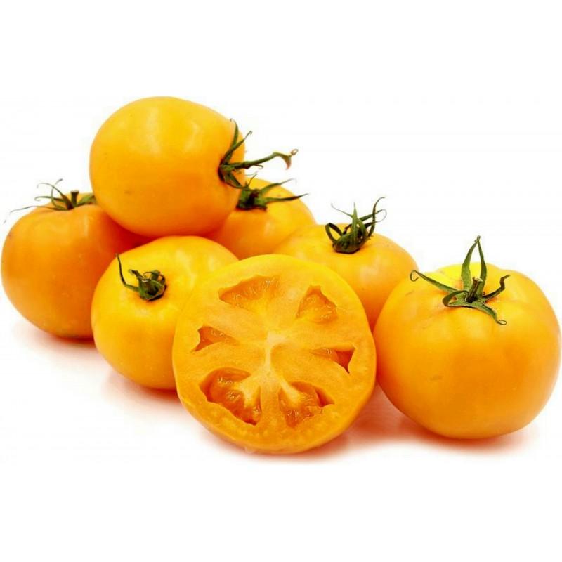 Golden Jubilee Tomato Seeds 1.55 - 2