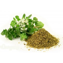 15.000 Seeds Wild - Greek Oregano (Origanum Vulgare) 15 - 2