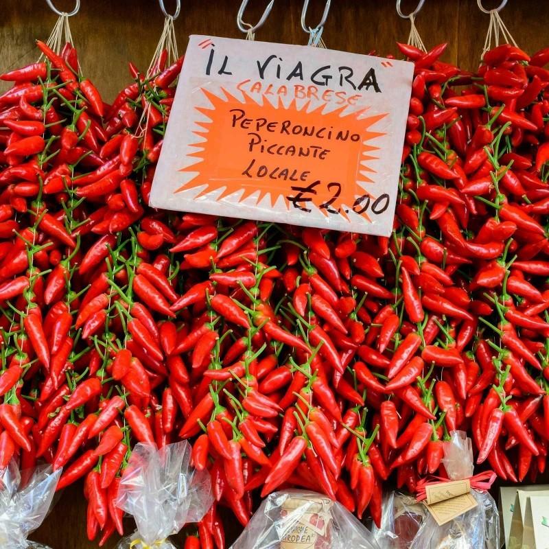 Sementes de pimentão Italianos PEPERONCINI 1.55 - 1