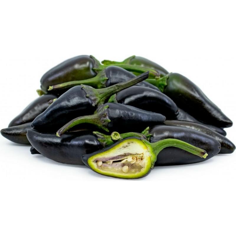 Sementes de Pimenta Jalapeño Purple & Brown 1.75 - 1