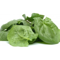 Semi di spinacio - GIGANTE AMERICANO 2.15 - 1