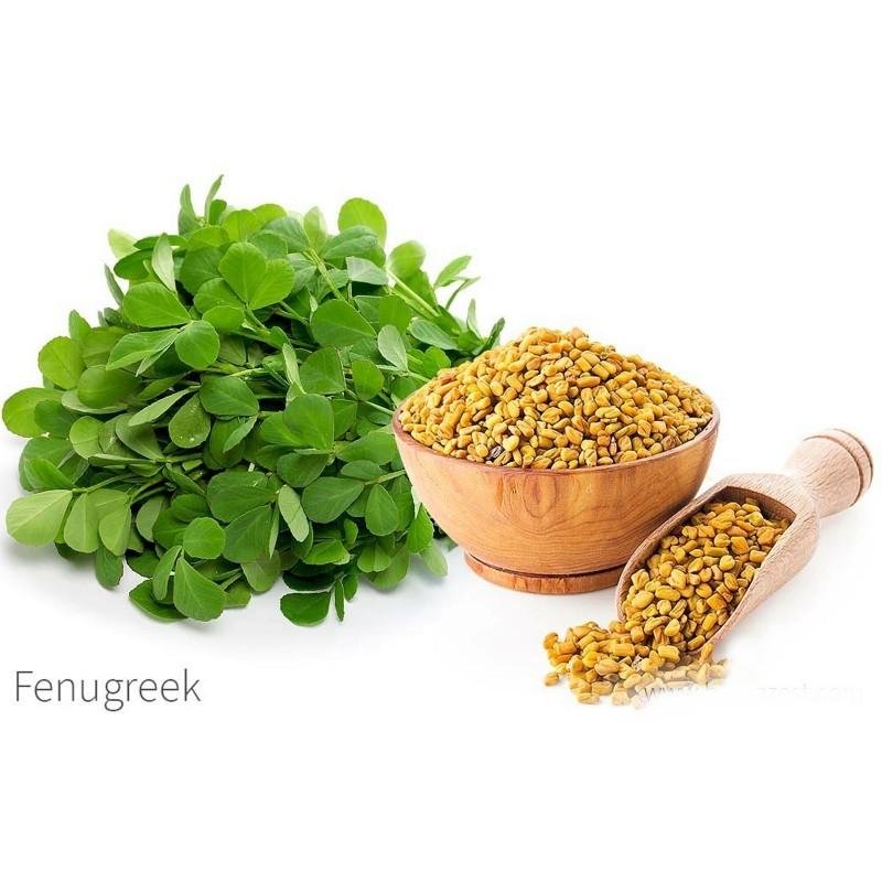 Fenugreek Seeds (Trigonella foenum-graecum) - Cena €1.75