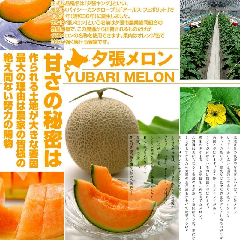 Yubari King Melon Seeds The most expensive fruit on the World 7.45 - 1