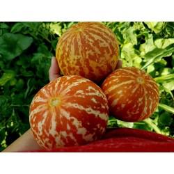 Semi di Melone Tigre Dall'Armenia 2.95 - 5