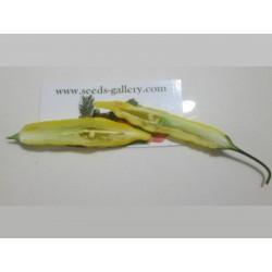 Lemon Drop Chili Seeds (Capsicum baccatum) 1.5 - 4