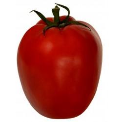 Tomatensamen Alparac - Sorte aus Serbien. 1.95 - 1