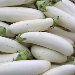 White Eggplant Seeds 1.85 - 2