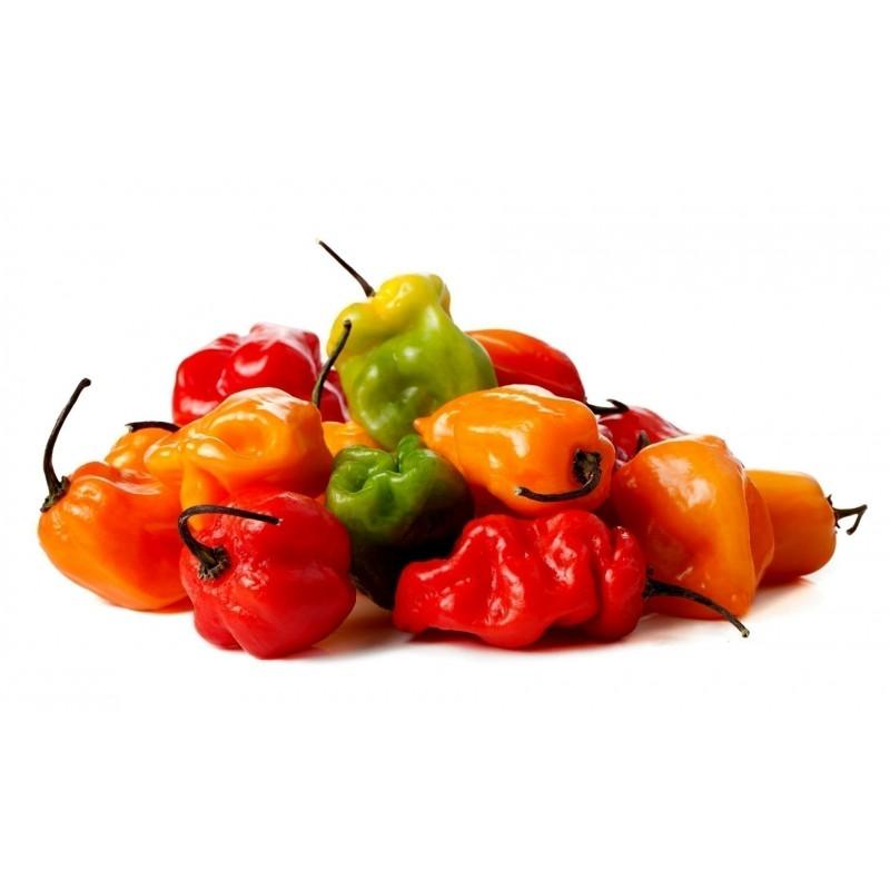 Semi di Peperoncino Habanero Arancione - Rosso