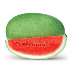 Charleston Gray Watermelon Seed 1.95 - 1