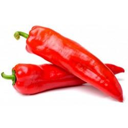 МАРКОНИ КРАСНЫЙ Семена сладкого перца 1.65 - 3