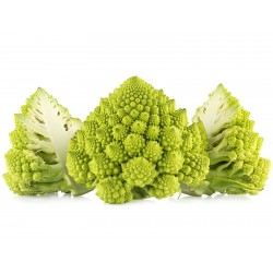 Romanesco Cauliflower Seeds 2.75 - 4