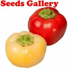 Sweet Pepper Seeds ''Novosadjanka'' 1.85 - 1