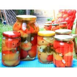 Σπόροι πιπέρι ''Novosadjanka'' 1.85 - 3