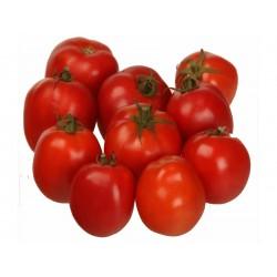 Sementes de Tomate Alparac - Variedade da Sérvia 1.95 - 4