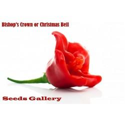 Sementes de Pimentas Chili Bishop Crown