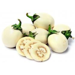 Sementes de Berinjela Planta Dos Ovos (Solanum Melongena) 1.85 - 1