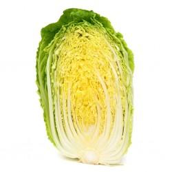 Sementes De Couve Chinesa (Brassica pekinensis) 1.95 - 2