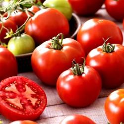 Ντομάτα σπόροι Saint Pierre 1.5 - 3