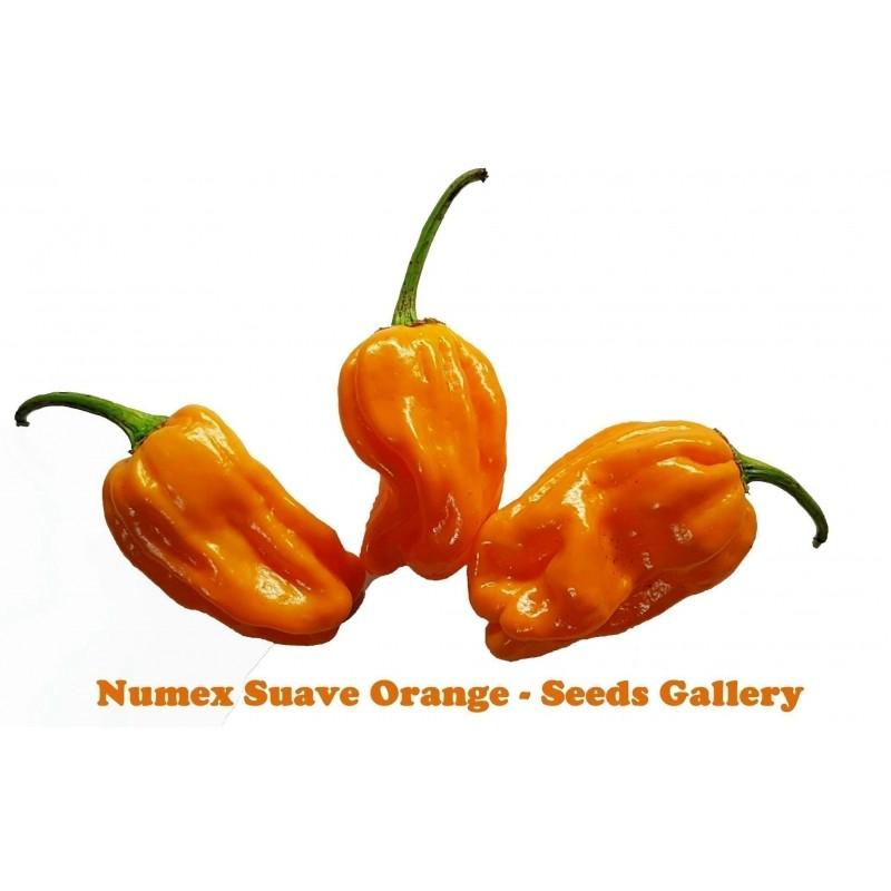 Sementes de Pimenta Numex Orange