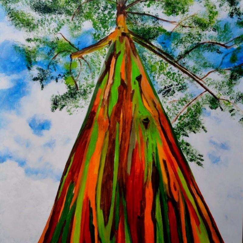 Sementes Eucalipto Arco-iris, Colorido 3.5 - 1