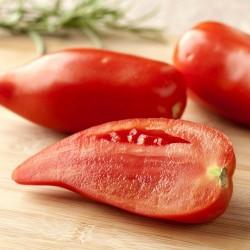 Andenhorn - ANDINE CORNUE Tomatensamen 1.95 - 1