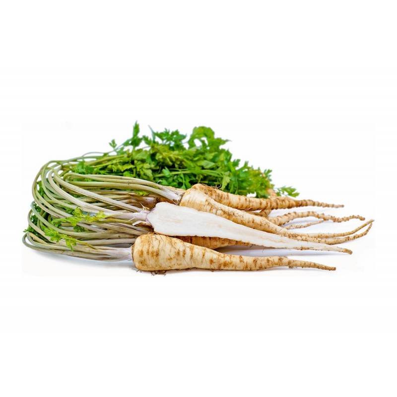 Root Parsley Medium long Seeds dual use 2.55 - 1