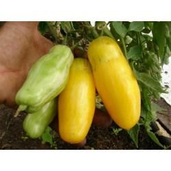 Sementes de Tomate Banana Legs 1.85 - 3
