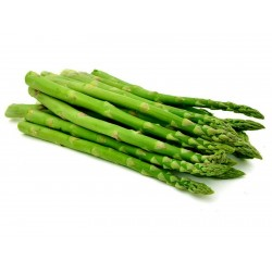 Semi Di Asparagus Officinalis 1.65 - 2