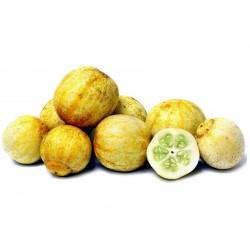 Sementes De Pepino Limão 1.95 - 1