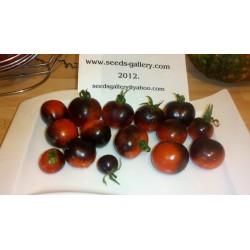 Sementes de Tomate INDIGO ROSE Raro 2.5 - 4