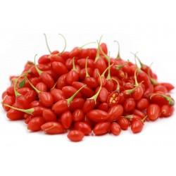 Sementes de Goji Berry (Lycium chinense) 1.55 - 1