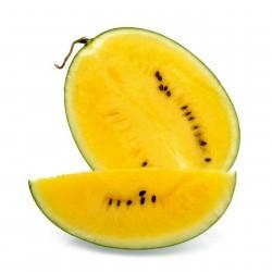 100 Sementes Melancia amarela JANOSIK  - 1