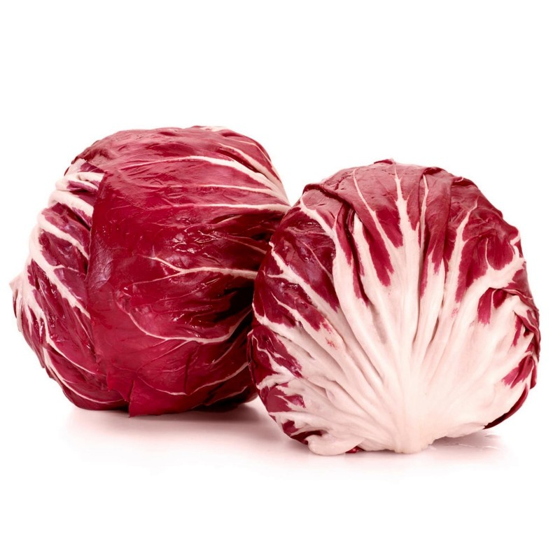 Chicoree Samen Radicchio Red Verona  - 2