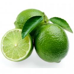 Σπόροι Περσικού λάιμ (Citrus latifolia x)  - 3