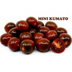 Семена томатов черри КУМАТО  - 2
