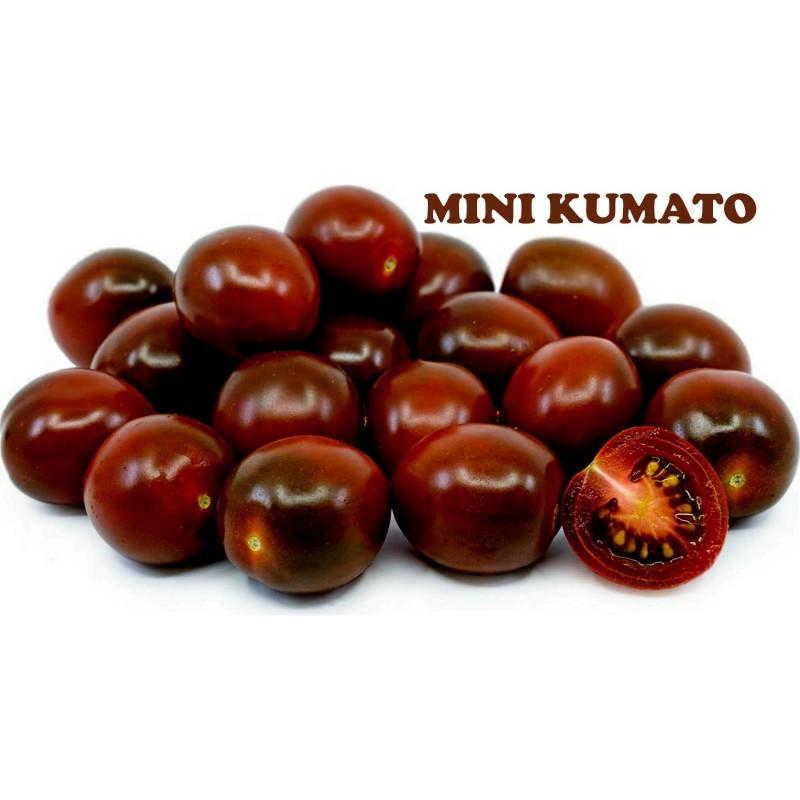 Semi di pomodoro ciliegio nero Kumato  - 2