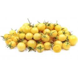 Schneewittchen - Snow White Cherry Tomatensamen Seeds Gallery - 3