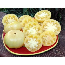 Graines de tomate Merveille Blanche (White Wonder) Seeds Gallery - 3