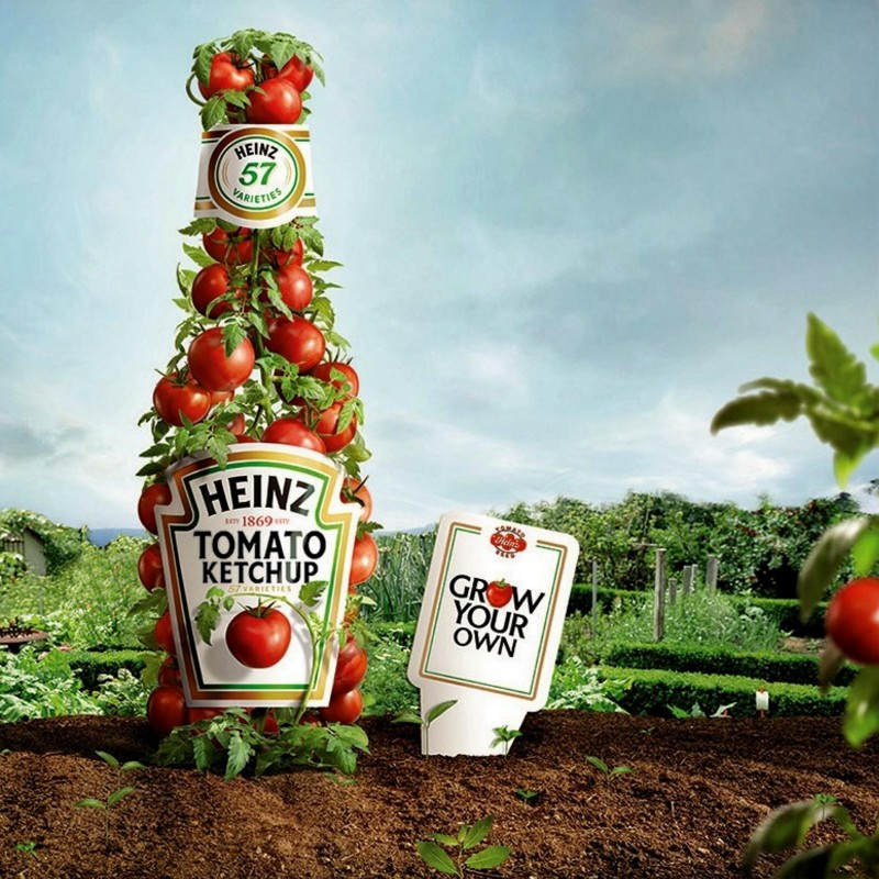 Sementes de tomate HEINZ 1350  - 2