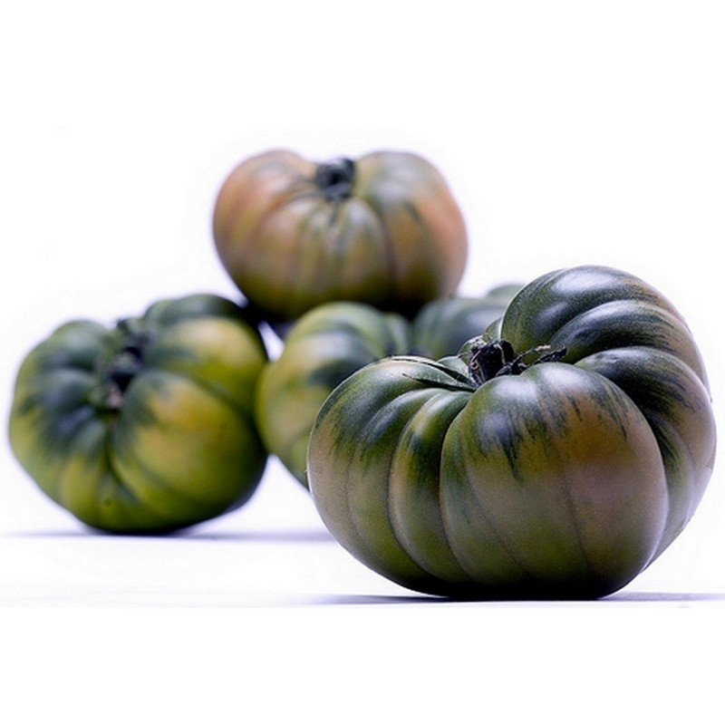 Raf Tomaten Samen  - 7
