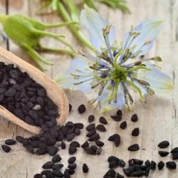 Black Caraway, Black Cumin Seeds (Nigella sativa)  - 2