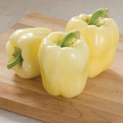 Sementes de pimentão branco BELINDA  - 2