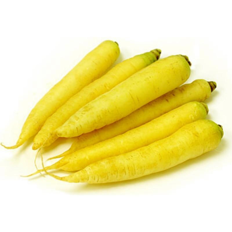 Riesen gelbe Möhre Karotte Samen  - 6